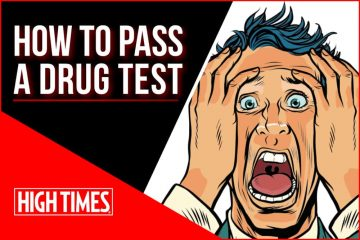 the ultimate guide from High Times on How to Pass a Drug Test